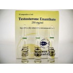 Testosterone Enanthate Primus Ray Laboratories